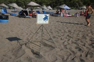 De Caretta Caretta schildpad eieren op het Iztuzu strand worden goed beschermd