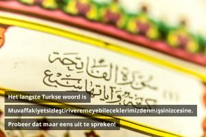 Het langste Turkse woord is Muvaffakiyetsizleştiriveremeyebileceklerimizdenmişsinizcesine. Probeer dat maar eens uit te spreken!