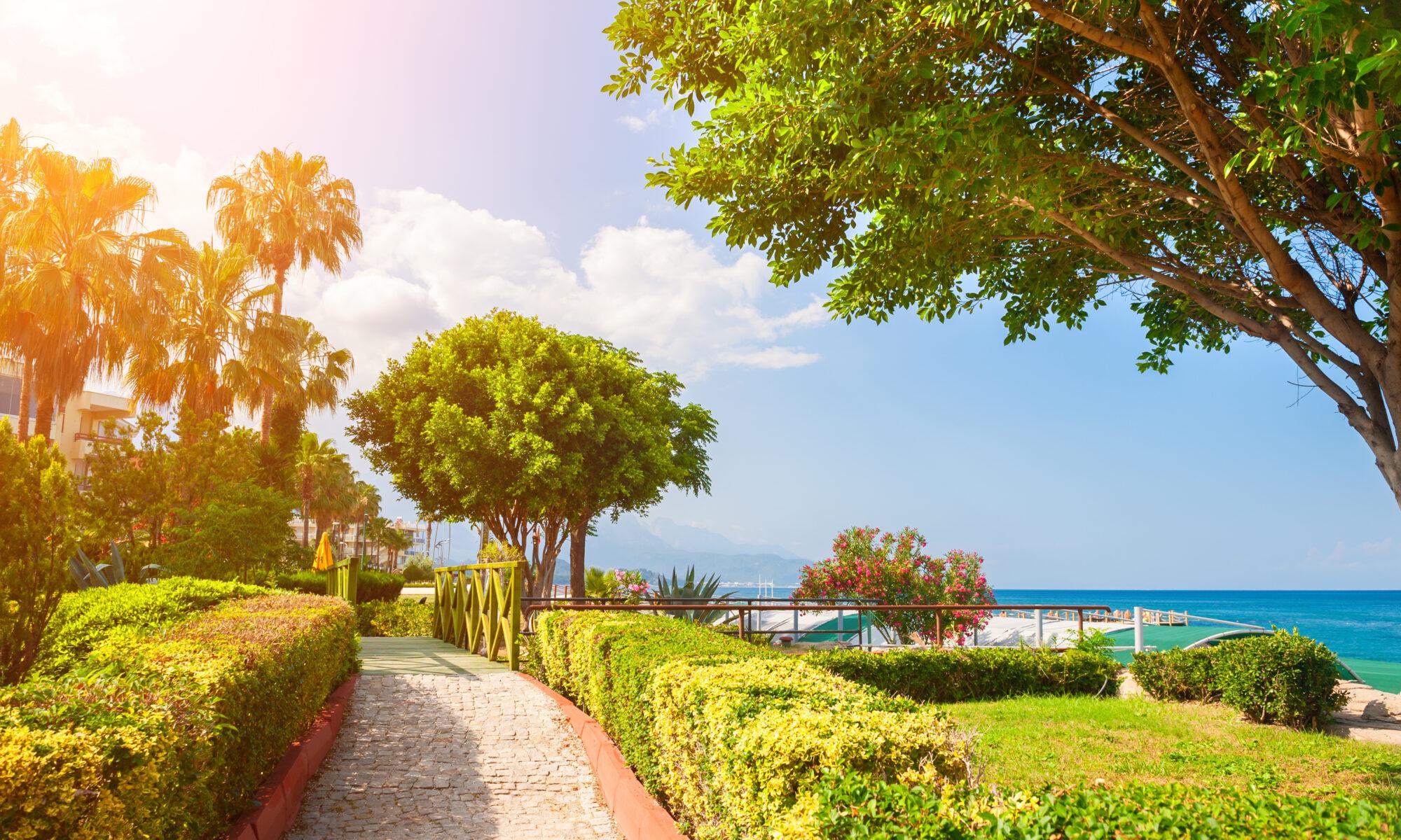 Prachtige boulevard aan zee met groene bomen in Kemer, Turkije